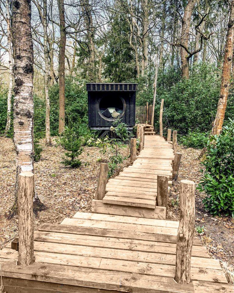 Chemin de bois à Bush Box à Anvers