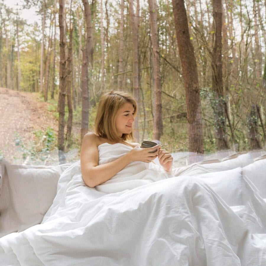 Réveil dans la forêt à Stay Ici dans les Ardennes