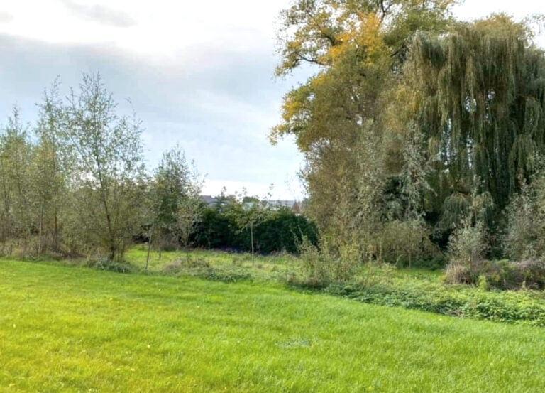 Côté jardin au Zenzibar près de Gavere