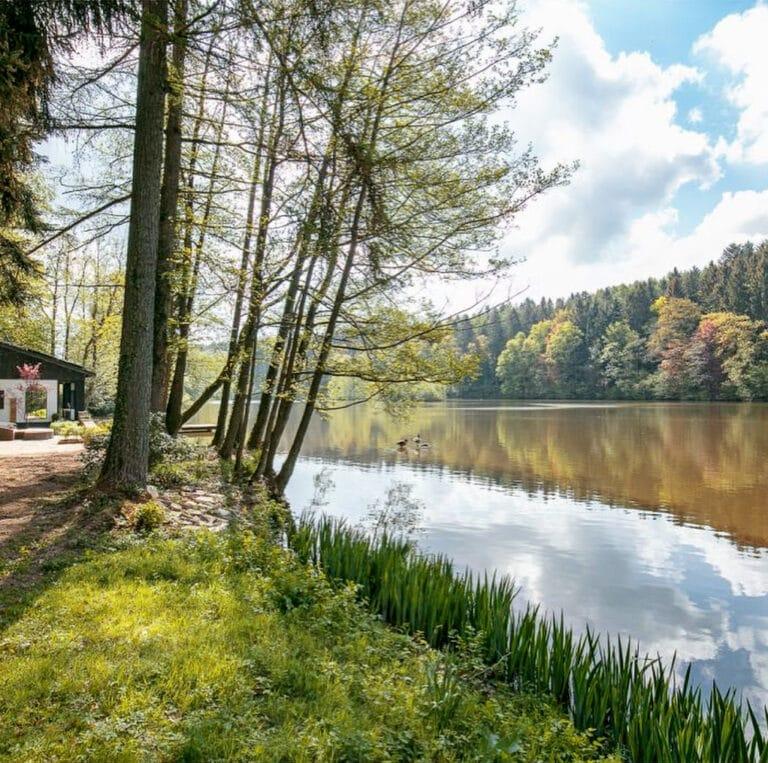 Chalet et lac à La douceur de l'Oise dans les Ardennes